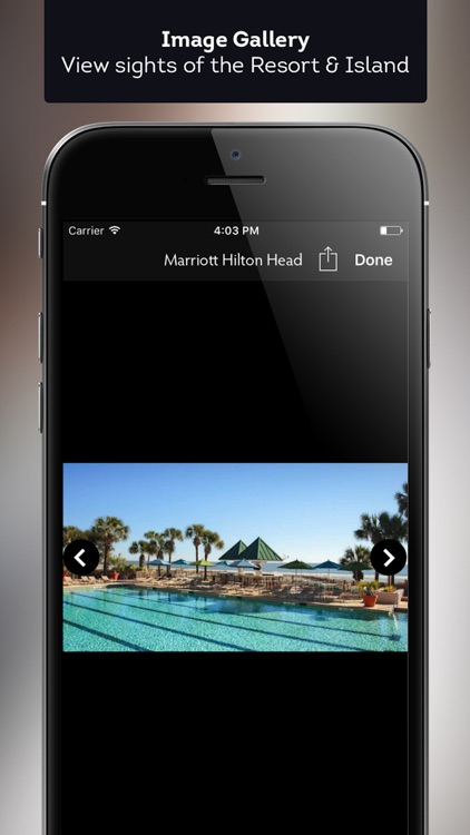 Marriott Hilton Head Resort screenshot-3