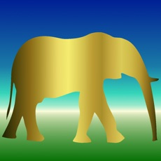 Activities of Elephant Powers of Recall