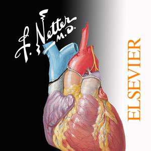 Netter's Anatomy Atlas 7e ios app