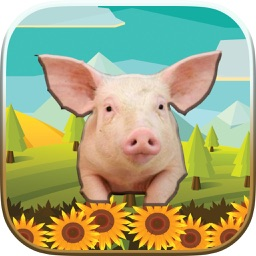 Animals World Puzzle Game