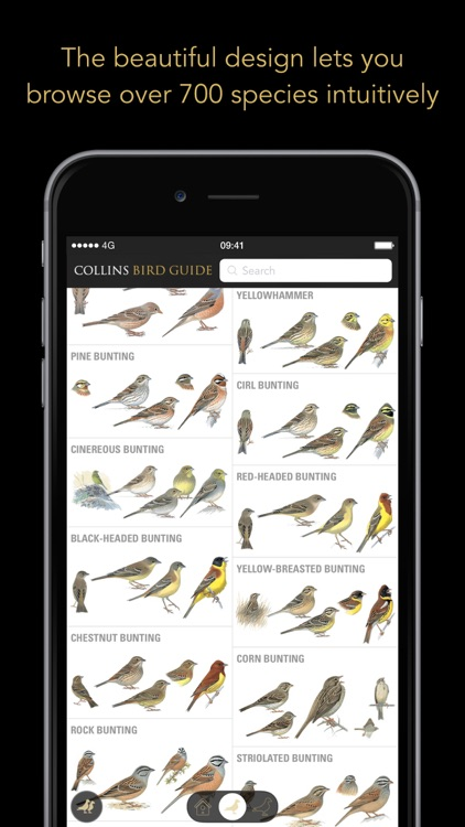 Collins Bird Guide screenshot-0