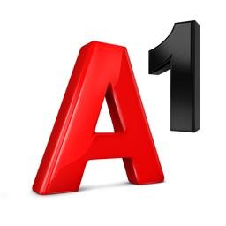 Mein A1