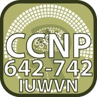 Codes for CCNP 642 742 IUWVN for CisCo Hack