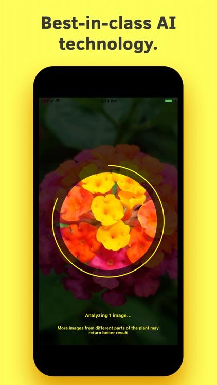 Plant Identification screenshot-4