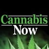 Cannabis Now - iPhoneアプリ