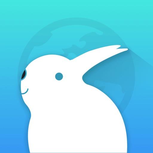 Kiwi Browser - VPN & AdBlock