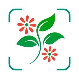 Plant Identifier - WhatPlant