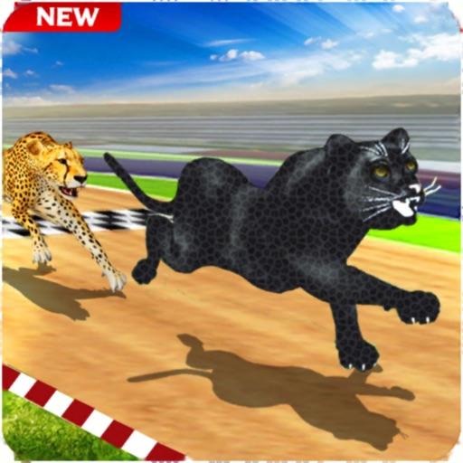 Crazy Wild Black Panther Race