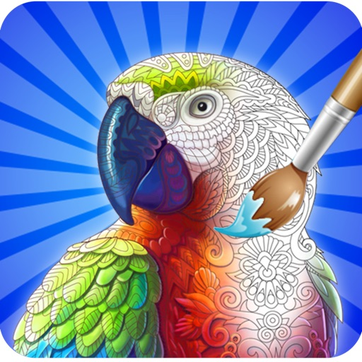 Coloring Cute Birds - Paint