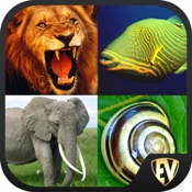 Animals Encyclopedia (Facts, Classification, Biodiversity, Habitat) & Puzzle icon