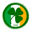 Ranieri Pires - GNIB Ireland アートワーク