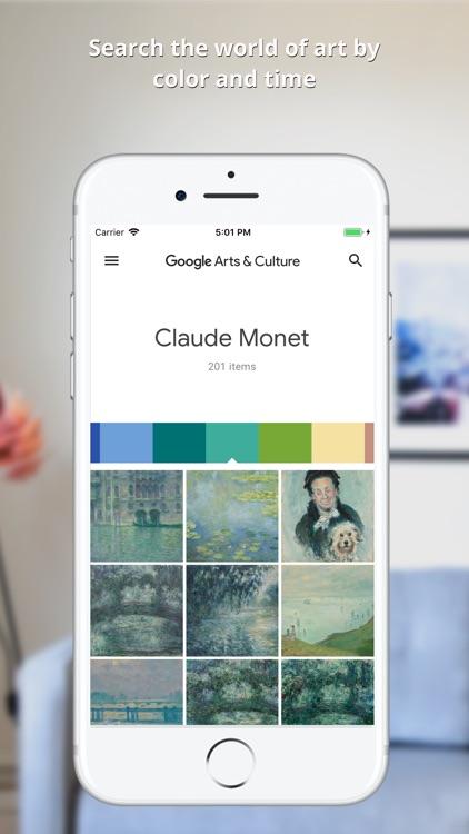 Google Arts & Culture screenshot-6