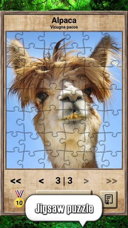 Animal Kingdom - Quiz Game screenshot-7