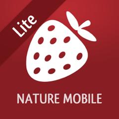 Wilde Beeren und Kräuter LITE