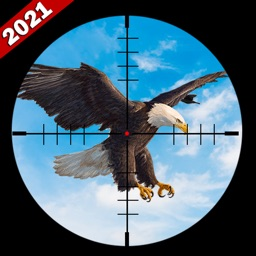 Wild Bird Hunting Arena