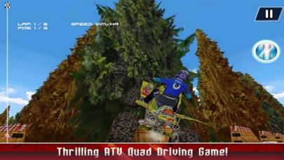 Champion ATV Quad Bike screenshot three