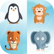 Activities of Animal Matching Memory