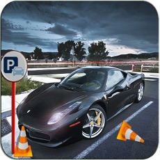Activities of Elite Valet Car Parking: The Extreme Driving Test