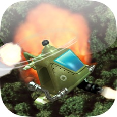 Activities of Helicopter Jungle Flight Mission