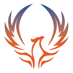 Phoenix Cheer Elite