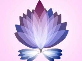 Beautiful Flower Stickers