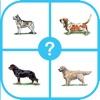 Dog Breed Quiz : Guess The Dog Trivia Pup Games