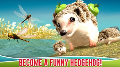 Forest Hedgehog Simulator 3D screenshot one