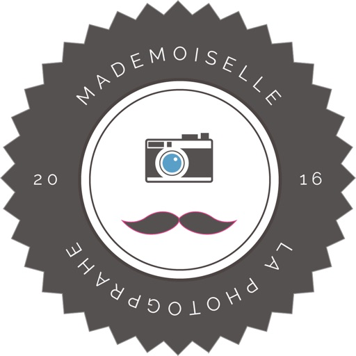Mademoiselle La Photographe Wallpaper