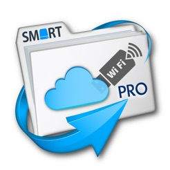 ‎File Explorer Pro & Disk Mounter Pro - File and Cloud Manager with WiFi  USB Drive