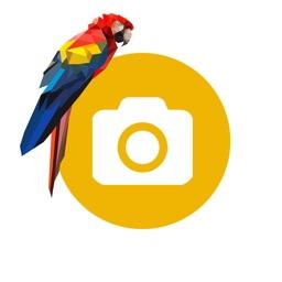 Foto16 - Цифровая Печать фотографий
