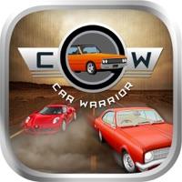 Codes for Car Warrior Hack