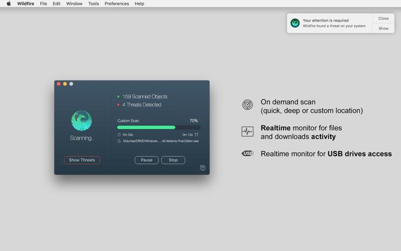 Wildfire Antivirus Screenshot - 2