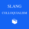 Thuy Duong - American Slang and Colloquialism Dictionary アートワーク