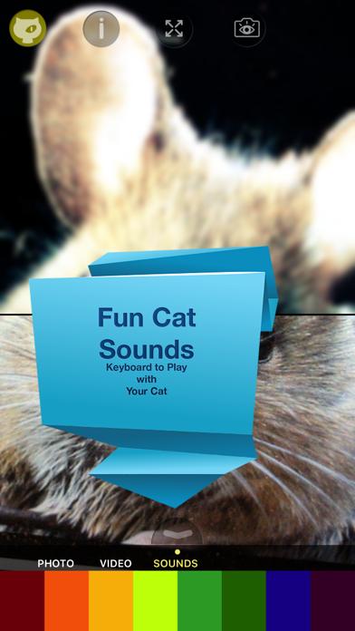 Cat Vision HDのおすすめ画像4