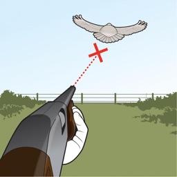 Bird Hunter - Retro Bird Hunting Game
