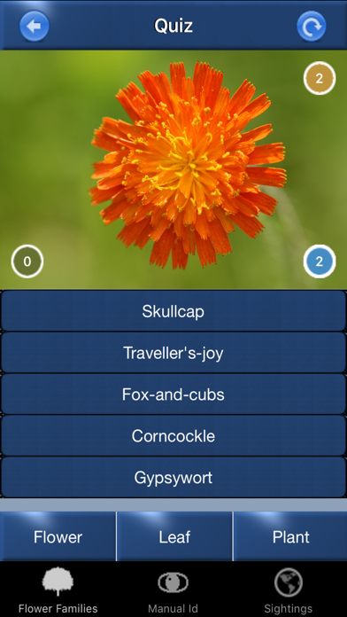 Wild Flower Id Automatic Recognition British Isles Screenshot 5