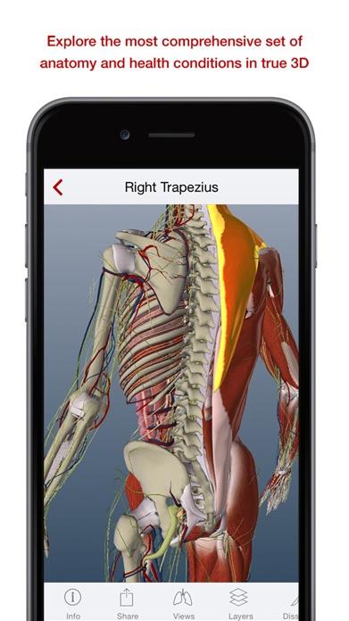 BioDigital 3D Human Anatomy Screenshot