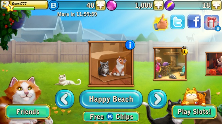 Bingo Cats screenshot-1