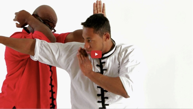 Shaolin Kung Fu Master Class