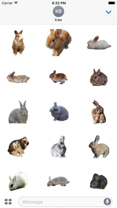 Kaninchen FotoaufkleberScreenshot von 2