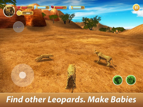 Leopard Family Simulator screenshot 6