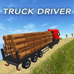 Truck Driver Cargo 3D