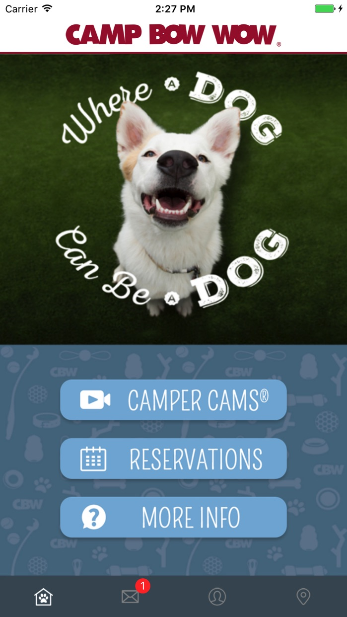 Camp Bow Wow Screenshot