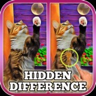 Hidden Difference: A Day with My Cat icon