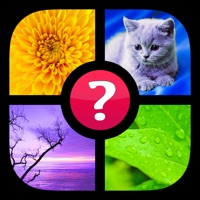 Codes for Guess the Word! ~ Photo Quiz with Pics and Words Hack