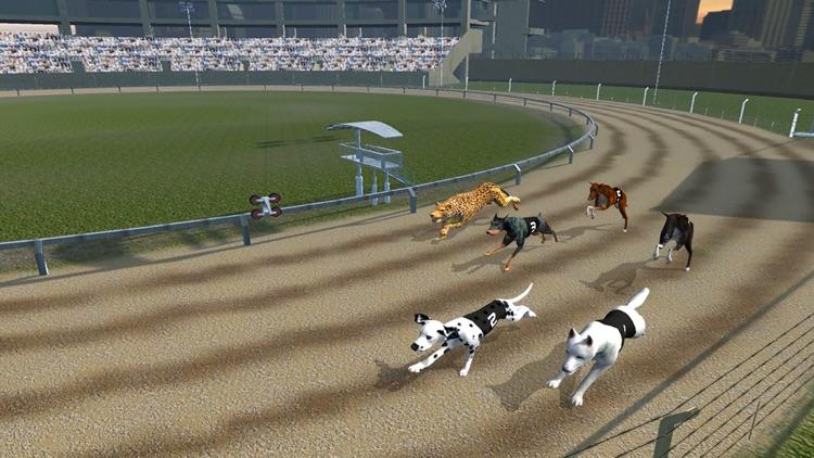 Crazy Dog Racing : Chase Racing Bunny With Pet Dog screenshot-4