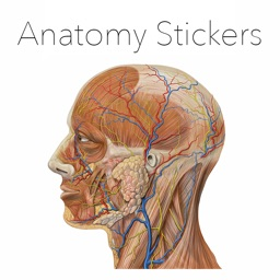 Anatomy Stickers