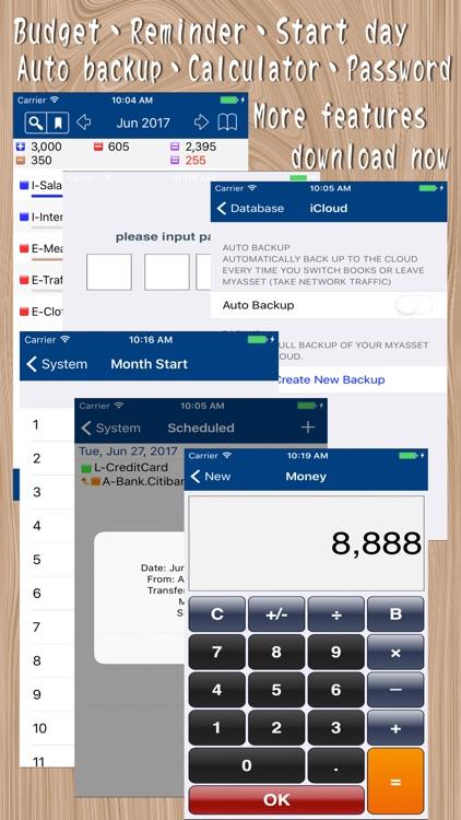 MyAsset Pro - My Accounting Book Pro screenshot-4