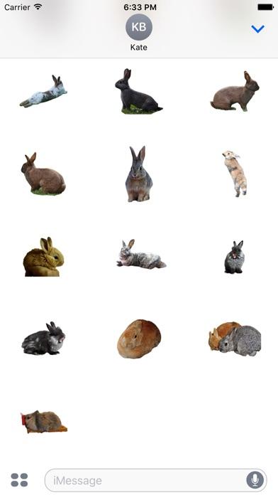 Kaninchen FotoaufkleberScreenshot von 4