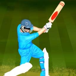 Cricket 2D